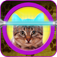 Cat horoscope booth: Horoscopes for your pet